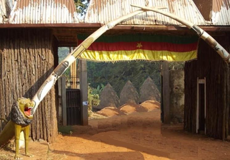Bamileke defenses elephant chefferie