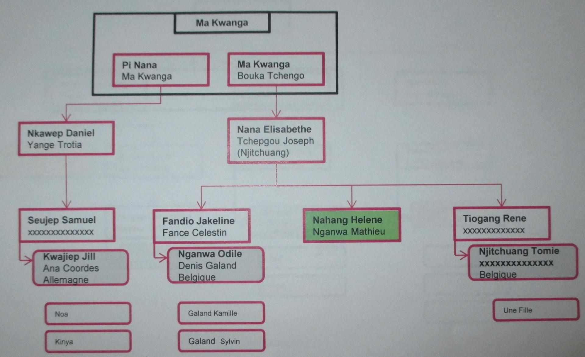 Genealogie ma kwanga