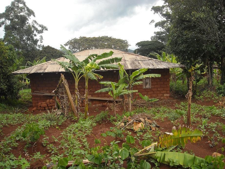 Maison traditionnelle a bamena