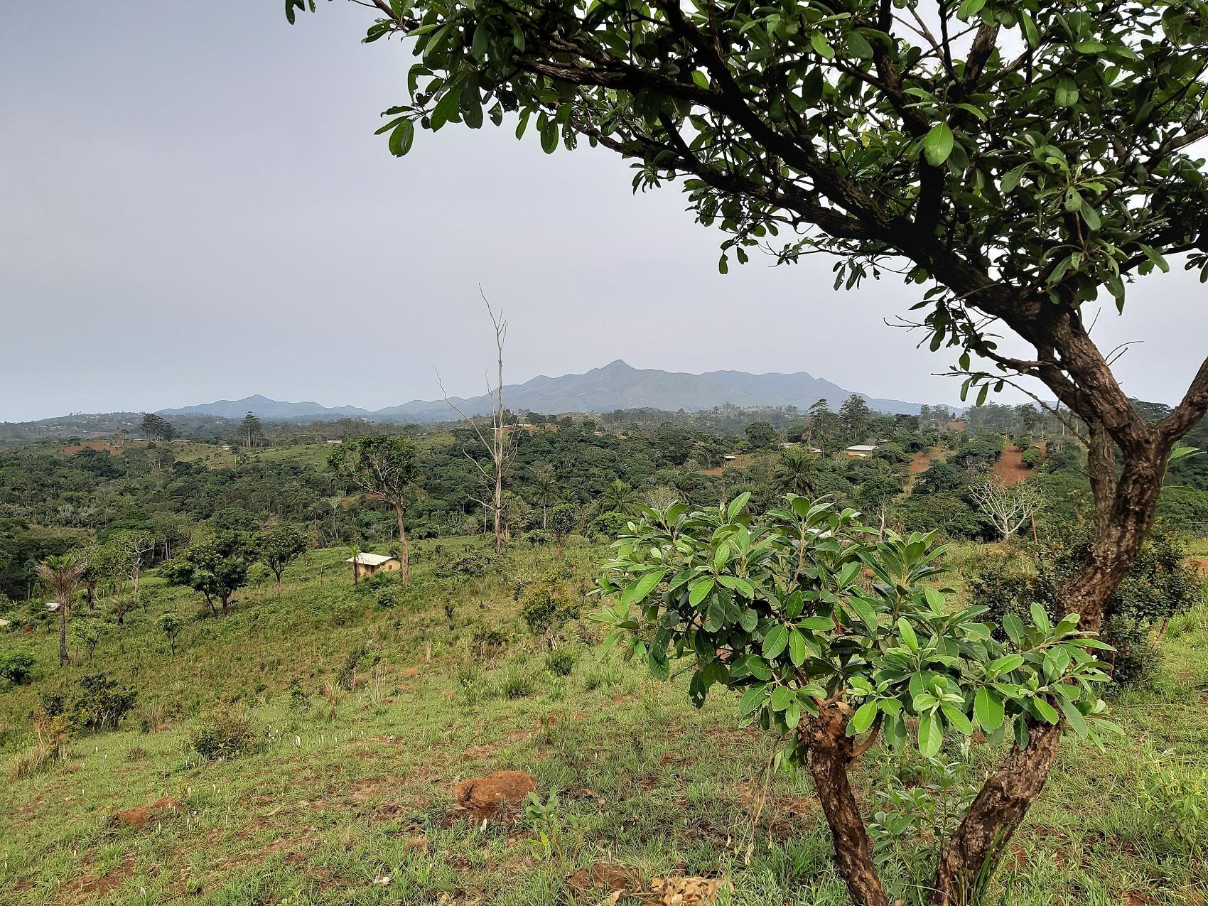 Monts batchingou