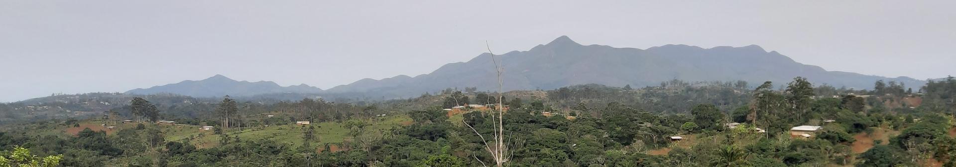 Panorama batchingou